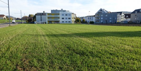 Oberkulm, Bauland Zone WG3