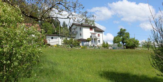 Gontenschwil, Mehrfamilienhaus mit drei Wohneinheiten