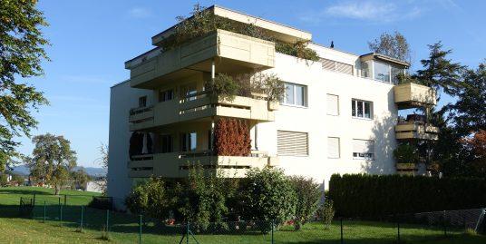 Hallwil, 3.5 Zimmer Wohnung